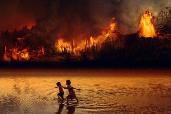 AMAZONIE la forêt amazonienne en feu